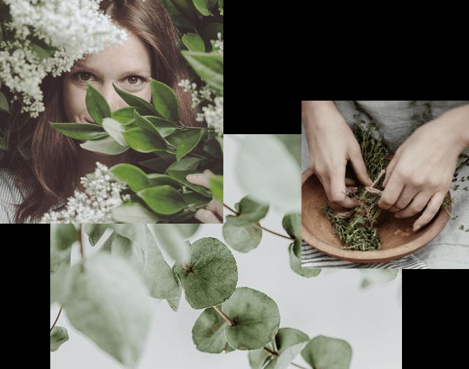 DrEberhardt Aromatherapie  reine Aetherische Oele aus Oesterreich